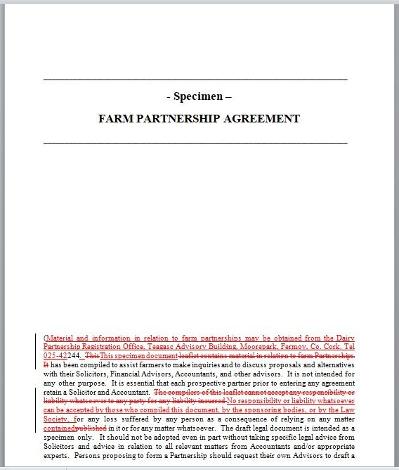 Partnership Agreement Template 03