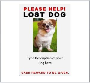 missing pet poster template 07