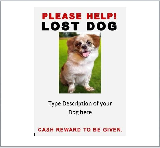 15 Free Missing Pet Poster Templates