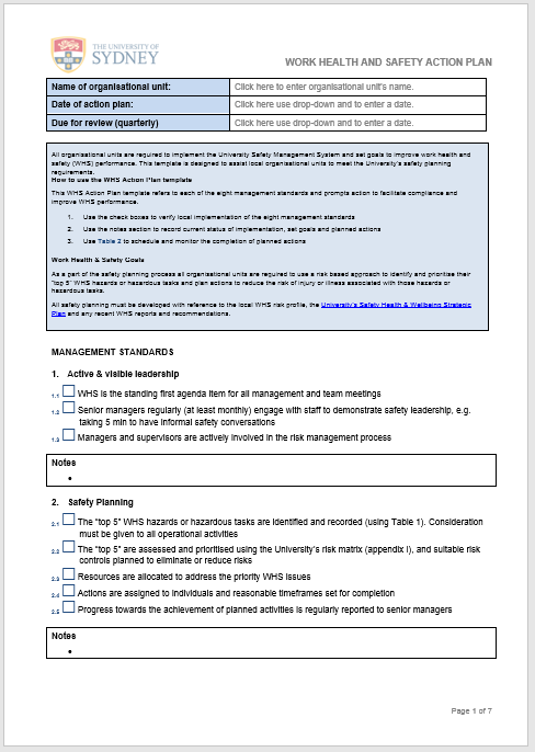 action plan template 16