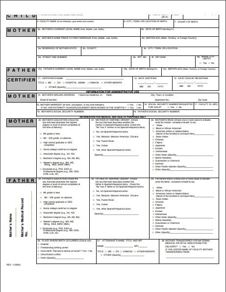 Official Birth Certificate Template from www.word-templates.com