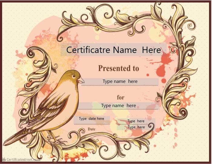 Blank Certificate Template 13