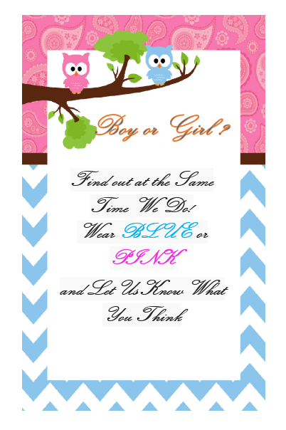 Gender Reveal Invitation Template 05