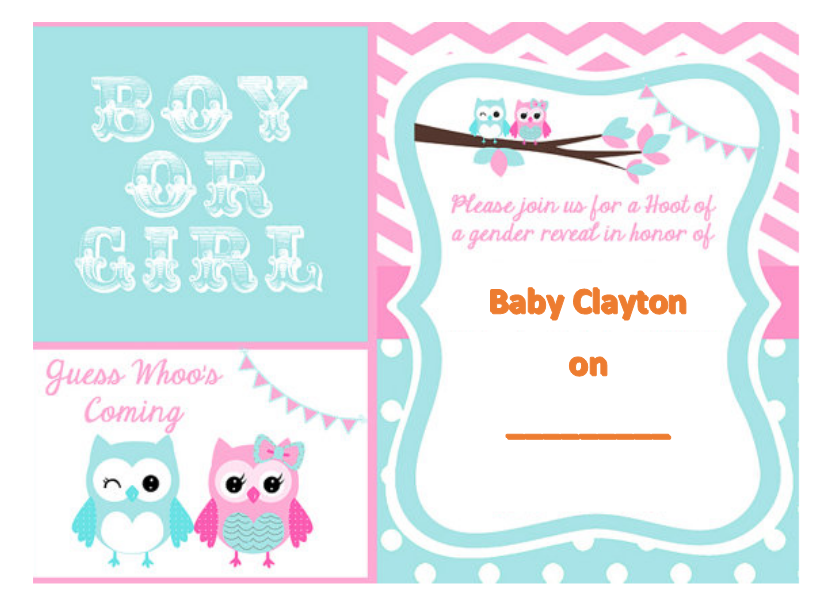 Gender Reveal Invitation Template 06
